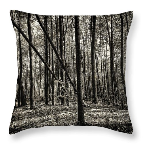 Woodland Throw Pillow featuring the photograph Woodland by Lourry Legarde