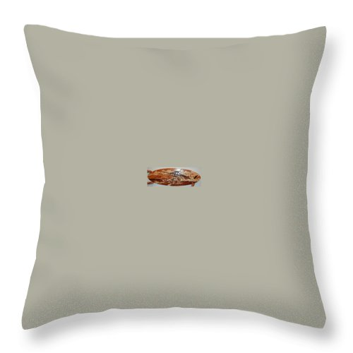 Woodwork Throw Pillow featuring the relief Woodwork by Carey Chen