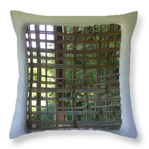 Throw Pillow featuring the photograph Woodwork by Nora Boghossian