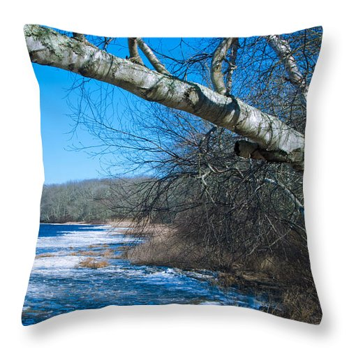 Worden's Throw Pillow featuring the photograph Wordens Pond Winter by Steven Natanson