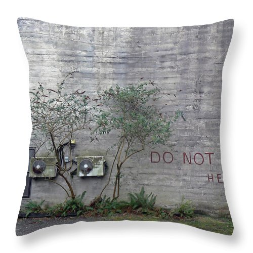 Urban Throw Pillow featuring the photograph Writing On The Wall by Pamela Patch