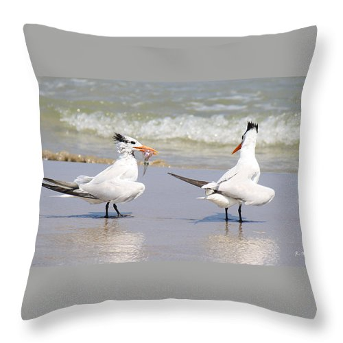 Roena King Throw Pillow featuring the photograph Ya Dont Dive Ya Dont Eat by Roena King
