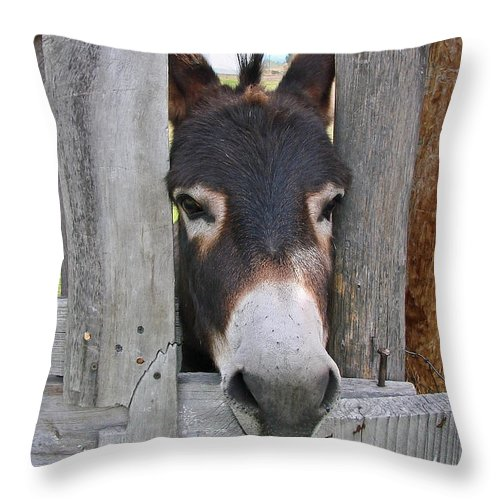 Donkey Throw Pillow featuring the photograph Yee Haw by Athena Mckinzie