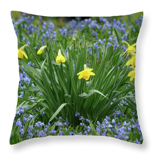 Green Throw Pillow featuring the photograph Yellow And Blue Flowers by Ronald Grogan