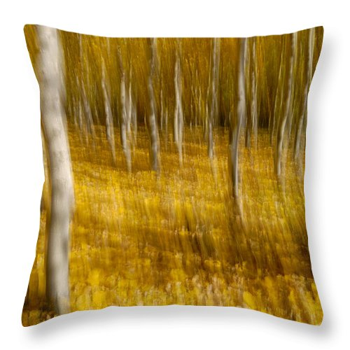 Abstracts Throw Pillow featuring the photograph Yellow Autumn by Guido Montanes Castillo