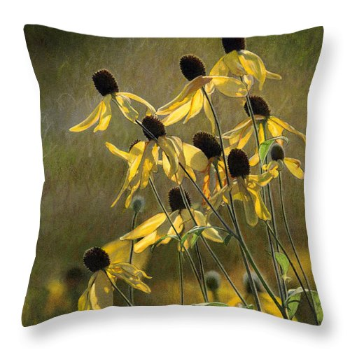 Color Pencil Throw Pillow featuring the drawing Yellow Coneflowers by Bruce Morrison