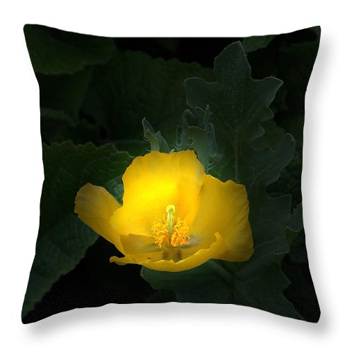 Yellow Throw Pillow featuring the photograph Yellow Flower Against Green by Mike Nellums