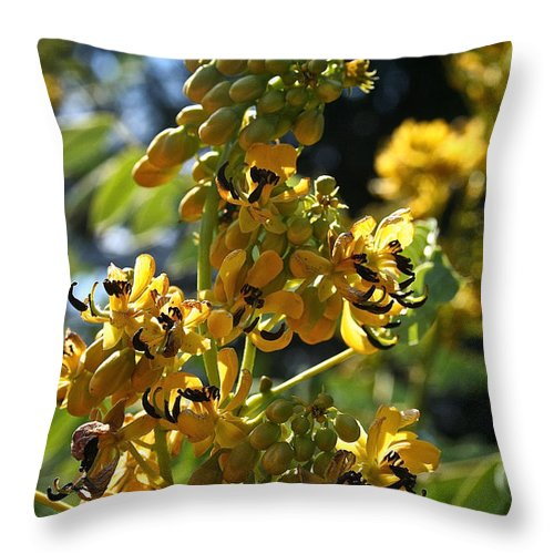 Outdoors Throw Pillow featuring the photograph Yellow Senna by Susan Herber