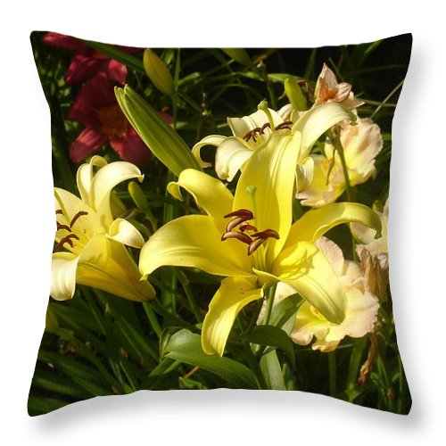 Landscape Throw Pillow featuring the photograph Yellow Splash by Steve Karol