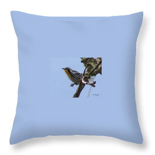 Roena King Throw Pillow featuring the photograph Yellow-throated Warbler by Roena King