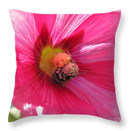 Macro Throw Pillow featuring the photograph You And Me Are One Said The Bee by Ausra Huntington nee Paulauskaite