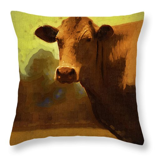 Cow Throw Pillow featuring the photograph You Can Not Cow Me by Kathy Clark