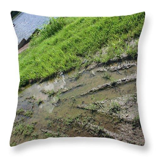 Crazy Throw Pillow featuring the photograph You Drove Me Crazy by Nina Fosdick