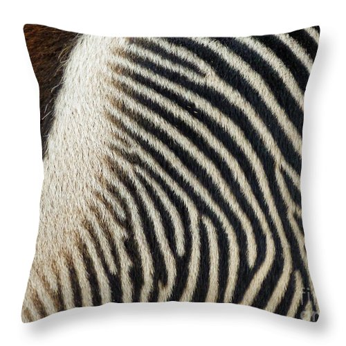 Zebra Caboose Throw Pillow featuring the photograph Zebra Caboose by Methune Hively