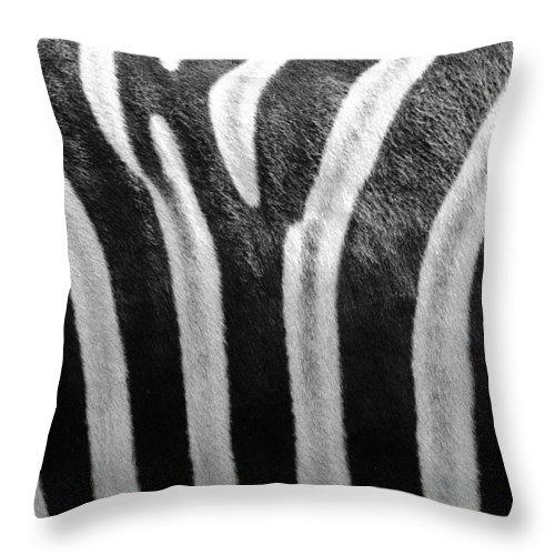 Zebra Throw Pillow featuring the photograph Zebra Print by Mark Heywood