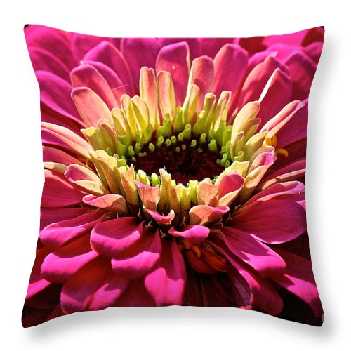 Plant Throw Pillow featuring the photograph Zinnia Power by Susan Herber