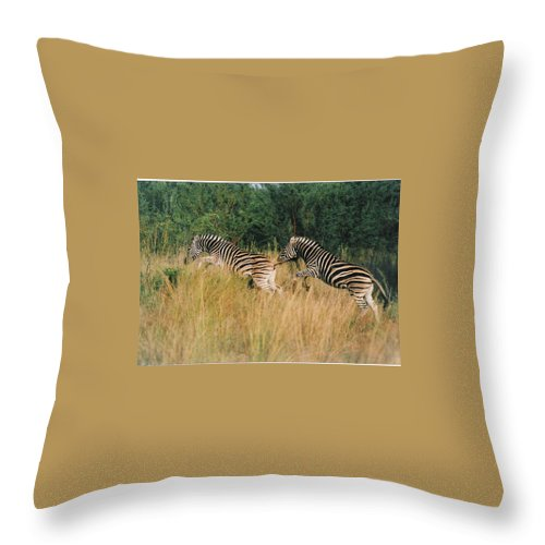 Bushes Throw Pillow featuring the photograph      Ballet by Leandro Sebastian  Marquez
