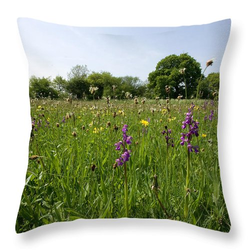 Orchid Throw Pillow featuring the photograph Ancient Hay Meadow by Bob Kemp