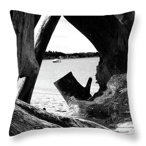 Hansville Washington Throw Pillow featuring the photograph Drift Wood Window by Marti Green