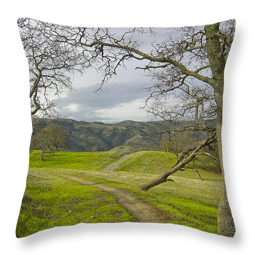Landscape Throw Pillow featuring the photograph East Ridge Trail Spring by Karen W Meyer