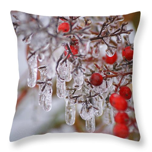 Winter Throw Pillow featuring the photograph Holiday Ice by Heidi Poulin