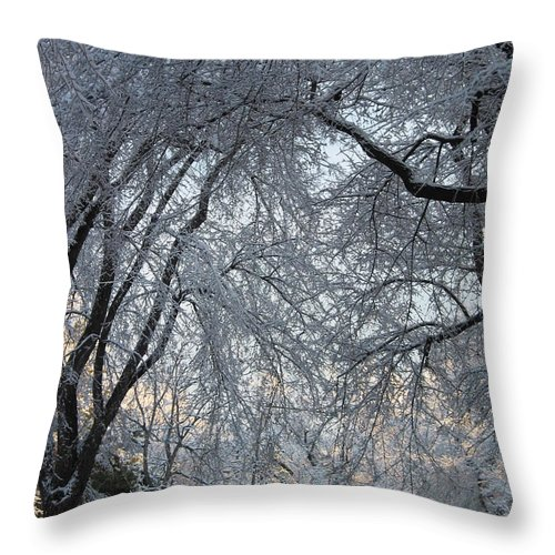 Ice Storm Throw Pillow featuring the photograph Ice Storm On The 6th II by Jacqueline Russell