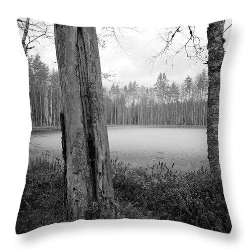 Lehtokukka Throw Pillow featuring the photograph Liesilampi 3 by Jouko Lehto