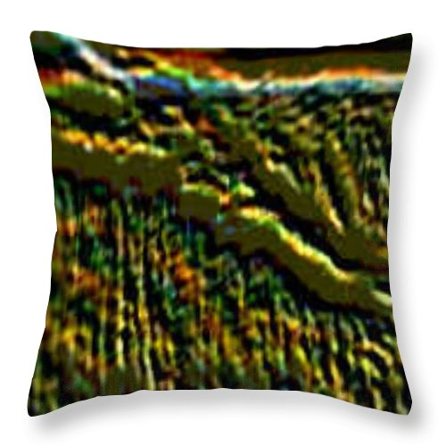 Canyons Throw Pillow featuring the digital art South Rim- N -green Grandeur by Brenda L Spencer