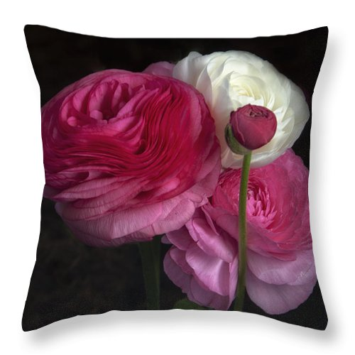 Flowers Throw Pillow featuring the photograph Three And A Half Blooms by Eleanor Bortnick