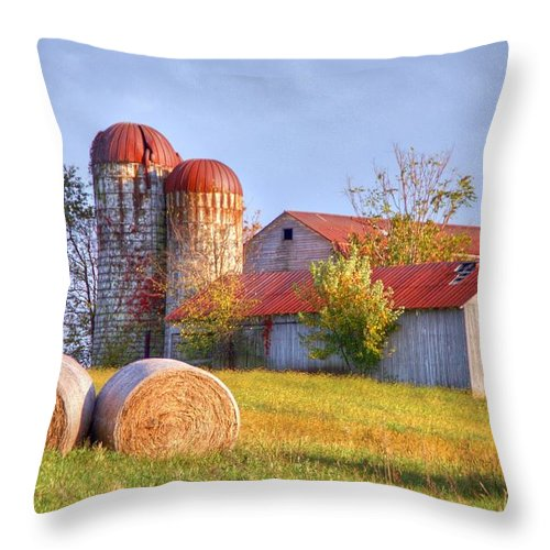Barn Throw Pillow featuring the photograph Two by Mitch Cat