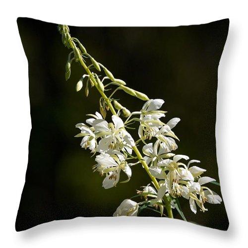 Lehtokukka Throw Pillow featuring the photograph White Fireweed by Jouko Lehto