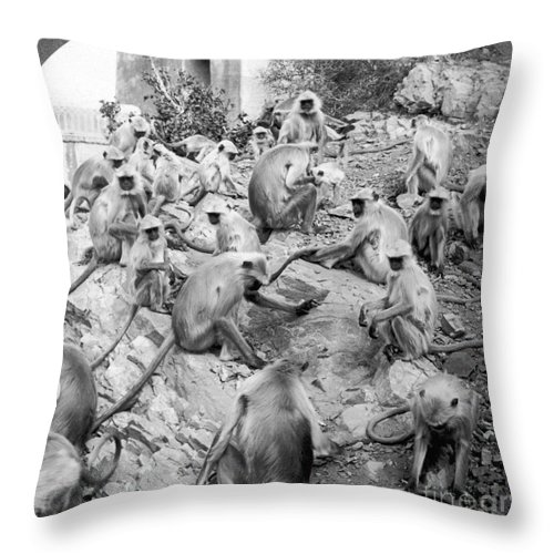 20th Century Throw Pillow featuring the painting India: Monkey Temple by Granger