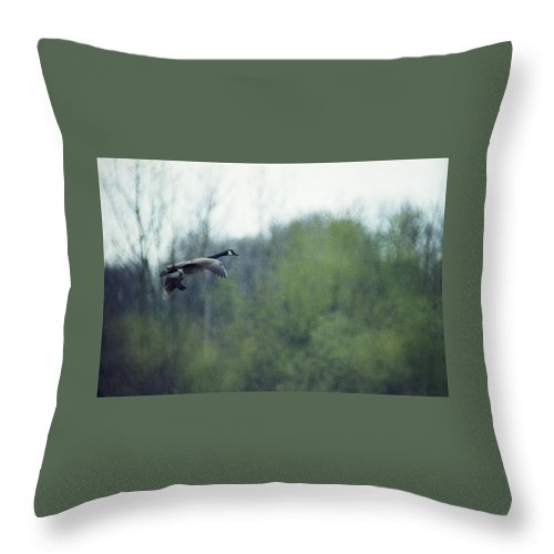 Canada Goose Throw Pillow featuring the photograph 070406-40 by Mike Davis