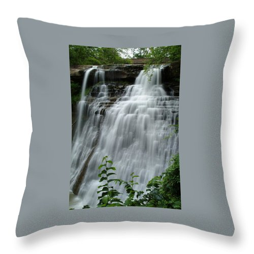 Waterfall Throw Pillow featuring the photograph 071809-314 by Mike Davis