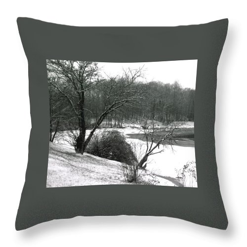 Scenic Throw Pillow featuring the photograph 072606-24a by Mike Davis