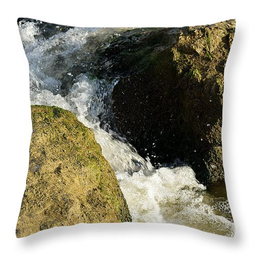 Throw Pillow featuring the photograph . by Terry Brackett