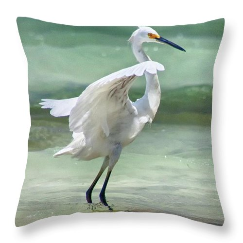 Egret Throw Pillow featuring the photograph A Snowy Egret (egretta Thula) At Mahoe by John Edwards
