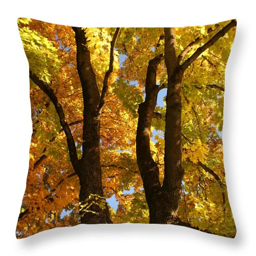 Achieve Throw Pillow featuring the photograph Achievement by Idaho Scenic Images Linda Lantzy