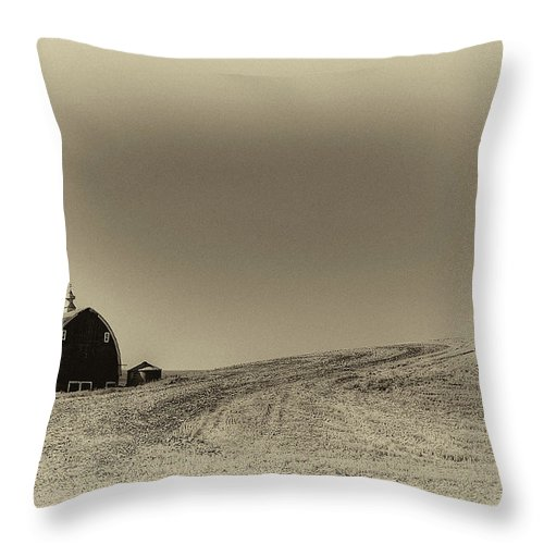 Barn Throw Pillow featuring the photograph After Harvest by David Patterson