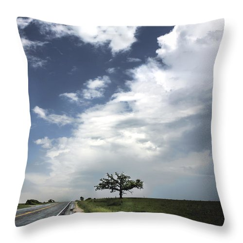 Landscape Throw Pillow featuring the photograph After The Storm by Al Mueller