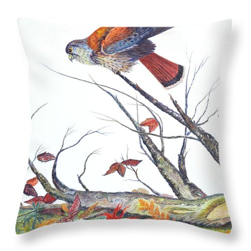 Bird Throw Pillow featuring the painting American Kestrel by Ben Kiger