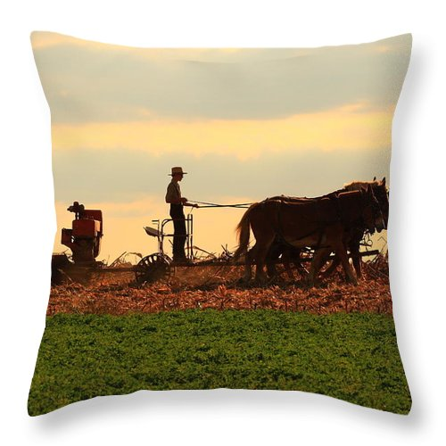 Amish Throw Pillow featuring the photograph Amish Farmer by Lou Ford