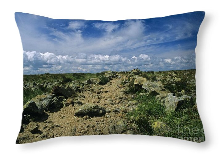 Appalachian Trail Throw Pillow featuring the photograph Appalachian Trail - White Mountains New Hampshire Usa by Erin Paul Donovan