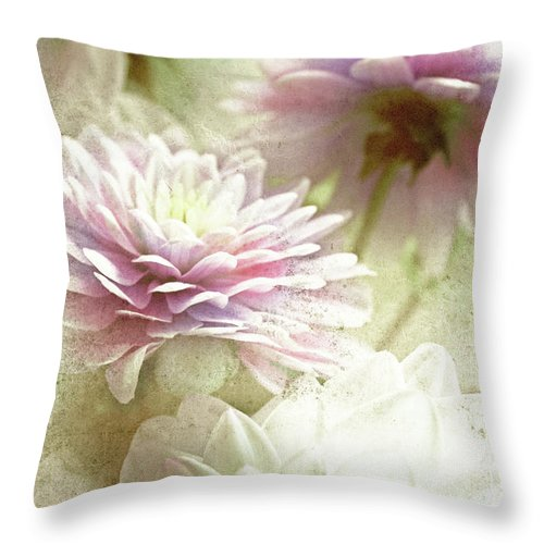 Asters Throw Pillow featuring the photograph Aster by Lali Kacharava