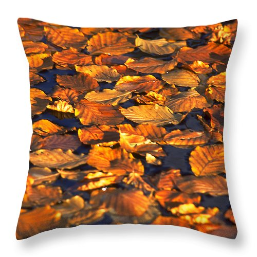 Leaves Throw Pillow featuring the photograph Autumn Leaves by Michael Mogensen