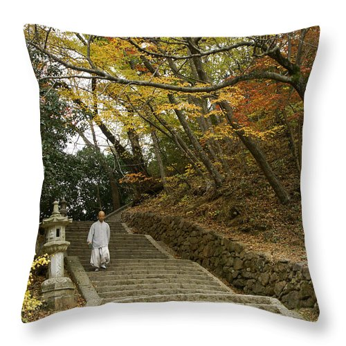 Asia Throw Pillow featuring the photograph Autumn Stairway by Michele Burgess