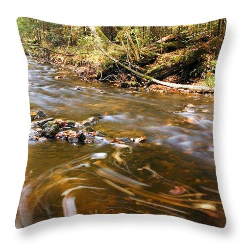 Michigan Throw Pillow featuring the photograph Autumn Swirl by Amanda Kiplinger