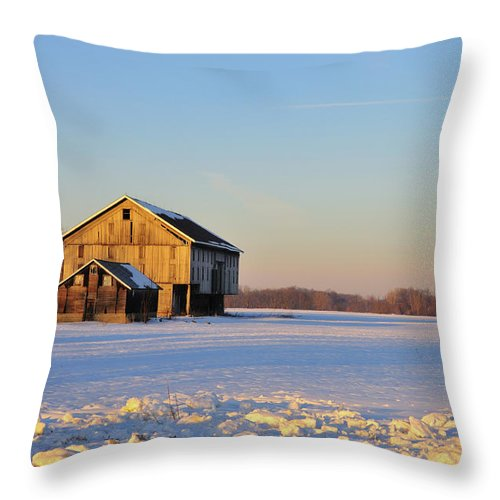 Barn Throw Pillow featuring the photograph Barn Late Afternoon by David Arment