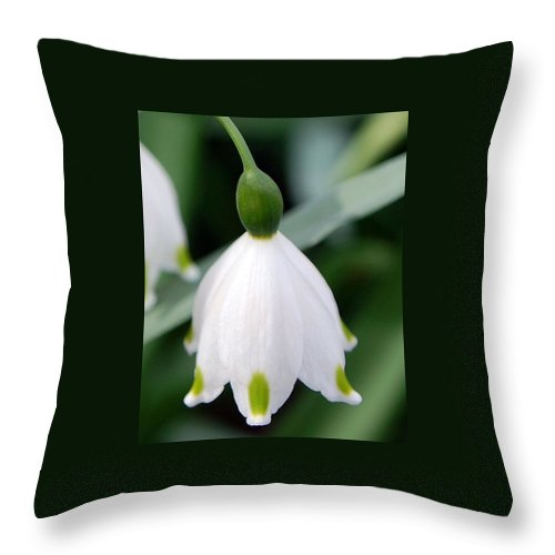 Bell Flower Throw Pillow featuring the photograph Bell Flower by Amy Fose