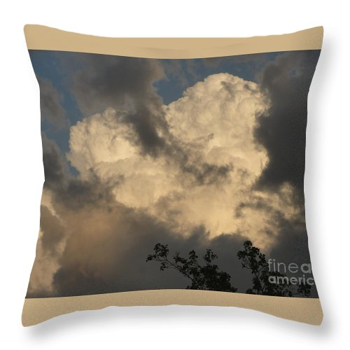 Big Cloud Throw Pillow featuring the photograph Big Cloud by Alice Heart